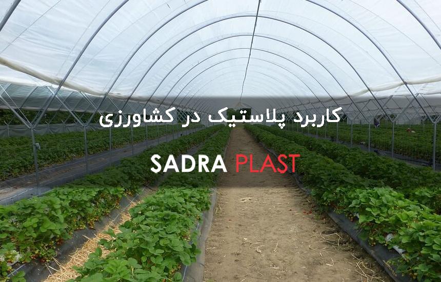 کاربرد نایلون عریض کشاورزی در گلخانه و کشاورزی و پرورش قارچ